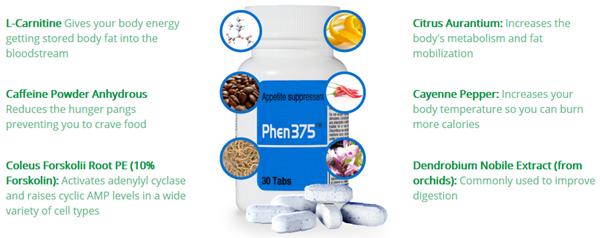 Phen375 Отзывы: Ингредиенты